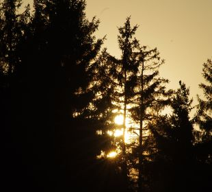 Sonnenuntergang in Gompelscheuer Pension Rehblick
