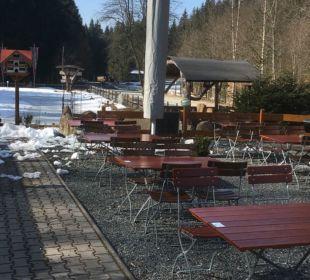 Gartenanlage Hotel Scharnagl mit Waldgasthof