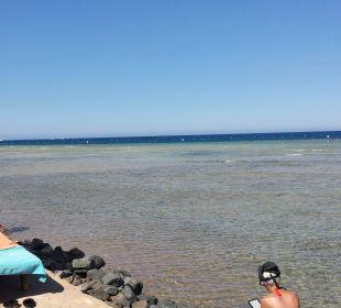 Meeresblick
