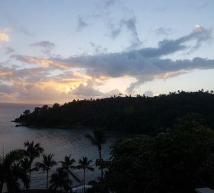Ausblick vom Pool  Grand Bahia Principe Cayacoa