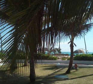 Sauber und gepflegte Gartenanlage Occidental Punta Cana