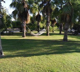 Viel grün in der Anlage Hotel Concorde De Luxe Resort