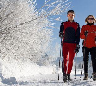 Winterwandern im Lesachtal/Maria Luggau Gasthof Paternwirt