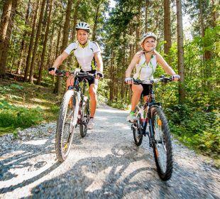 Mountainbiken rund um Gmünd Hotel Goldener Stern