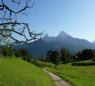 Wanderung zum Aschauer Weiher 10 Min. vom Haus Ferienwohnung Haus Rosenrot