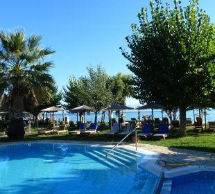 Sehr sauberer Pool Hotel Robolla Beach