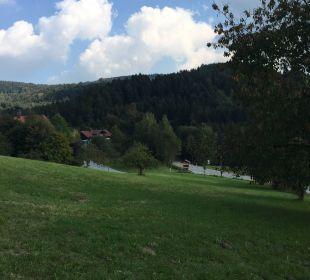 Tolle Landschaft Hotel Bayerischer Wald