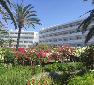 Einfach SCHÖN!!! Hotel Nissi Beach Resort