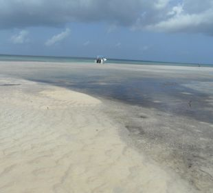 Sandbank  Dreams La Romana Resort & Spa