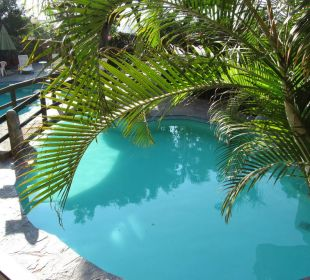 Pool auf der Terrasse