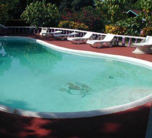 Pool vom Summerset Village in Negril