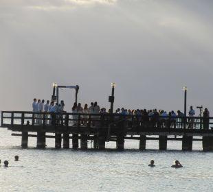 Romantische Hochzeit am Strand Dreams La Romana Resort & Spa