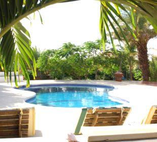 Relaxen am Pool Guesthouse StevieWonderLand