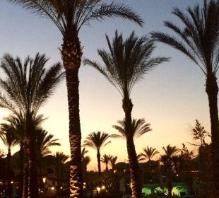 Sonnenuntergang Hotel Iberotel Makadi Beach