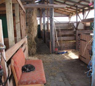 Stall Ferienhaus Wattkuckuck