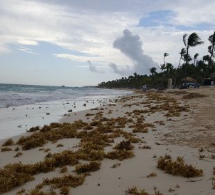 Strand Luxury Bahia Principe Esmeralda Don Pablo Collection