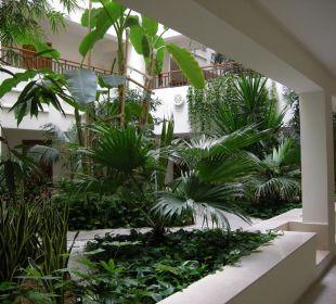 Exotische Pflanzen Hotel Mövenpick Resort & Marine Spa Sousse