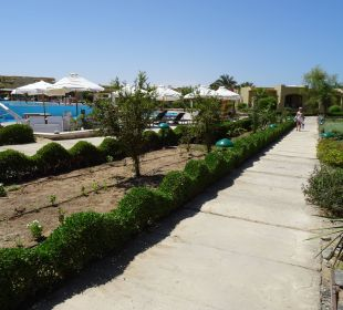 Weg am Hauptpool. Three Corners Fayrouz Plaza Beach Resort