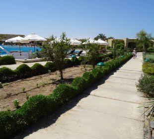 Weg am Hauptpool. Three Corners Fayrouz Plaza Beach Resort