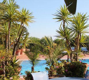 Blick auf den Pool Hotel Residence Fenicia