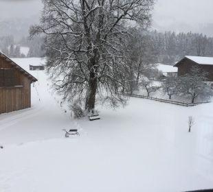 Schnee Bauernhof Lindenhof