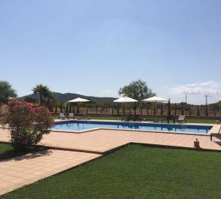 Pool Finca Sol y Vida