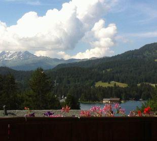 Aussicht vom Zimmer Hotel Waldhaus am See