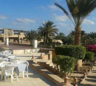 Schöne sonnenuntergänge konnte man hier sehen Hotel Utopia Beach Club
