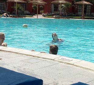 Pool Jungle Aqua Park