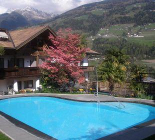 Außenpool in mediterraner Umgebung Hotel Zirmerhof