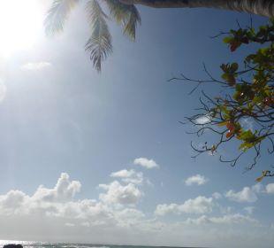Aussicht von der Sonnenliege Luxury Bahia Principe Cayo Levantado Don Pablo Collection