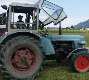 Ein Traktor ist immer im Einsatz Bio-Bauernhof Zacherlhof