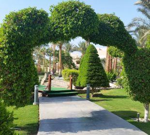 Tolle Gartenanlage