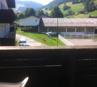 Ausblick Balkon Hotel Hannes