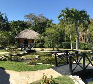Der Spa-Bereich Dreams La Romana Resort & Spa