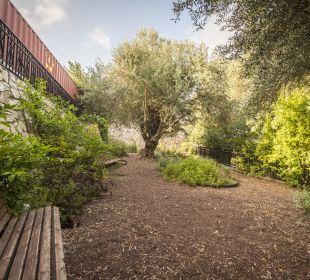 Gartenanlage Ruth Rimonim Safed Hotel