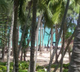 Wunderschön Hotel Vista Sol Punta Cana