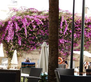 Der Hof mit Pool und Stühlen JS Hotel Yate