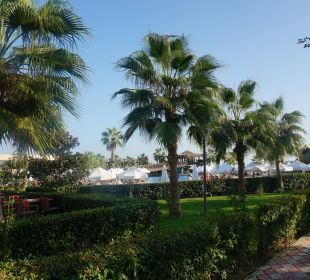 Der Pool Sherwood Dreams Resort