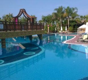 Pool morgens 09:00 uhr Hotel Royal Dragon