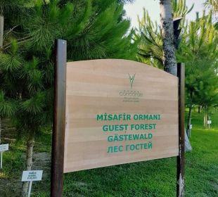 Guest Forest Hotel Concorde De Luxe Resort