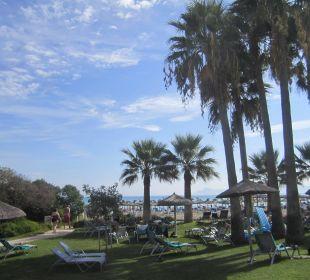 Traumhafte Gartenanlage Hotel Playa Esperanza