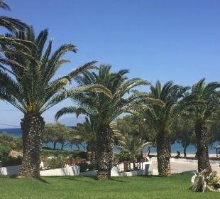 Hoteleingang - direkt gegenüber das Meer Hotel Lagas Aegean Village
