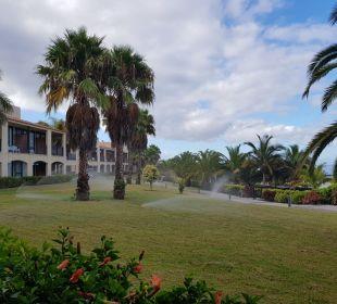 Gartenanlage La Palma Princess