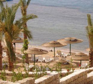 La spiaggia e la barriera corallina Hotel Continental Plaza Beach