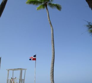 Strandidylle Hotel Vista Sol Punta Cana