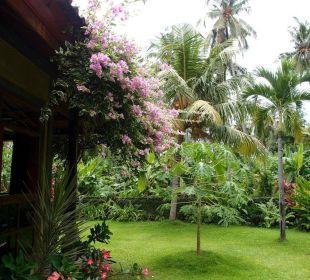 Hinterer Teil des Gartens am kleinen Bungalow Saraswati Holiday House