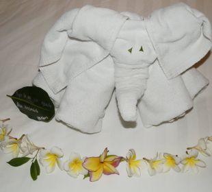 Lustig netter Handtuchelefant Anantara Bophut Koh Samui Resort