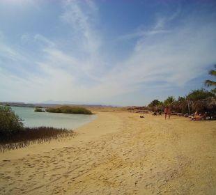 Bucht mit Mangroven