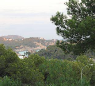 Ausblick vom Hotel aufs Meer Hotel Don Antonio